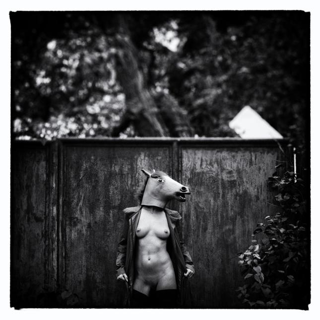 Rok Koňa