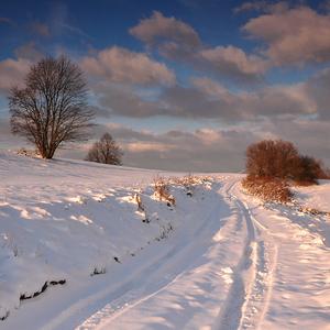 Zasneženou cestou.
