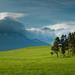hory majú svojho strážneho...