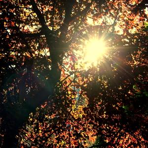 Jesenné leto
