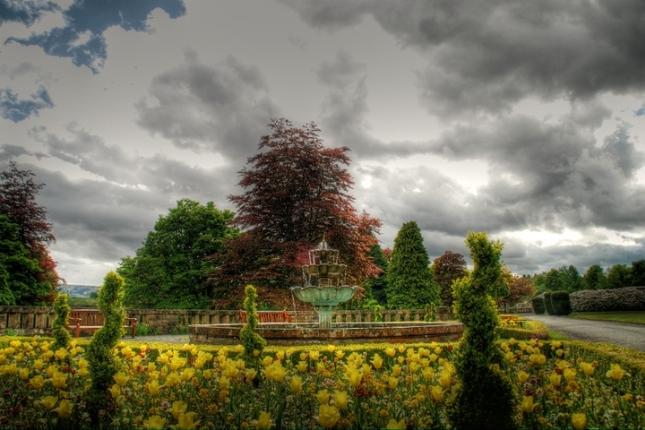Zahrada plna farieb