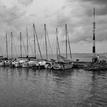 V prístave 1