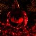 V odlesku Vianoc
