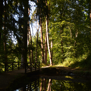 Zámocký park Svätý Anton