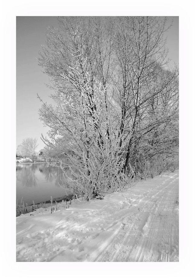 zasnežená príroda pri rieke