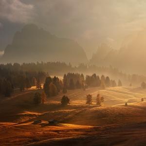Ráno na alpské louce