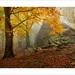 Podzimní toulání 5