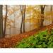 Podzimní toulání 3