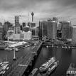 Sydney B&W #1