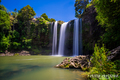 Whangarei Falls #1