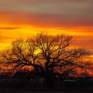 Západ Slnka 8.11.2015