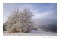Zima na Lazoch 3