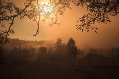 Jeseň a ranná hmla
