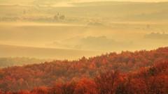 Dedina v mlhe