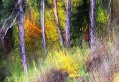 Jesenné maľovanie 18