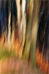 Jesenné maľovanie 4