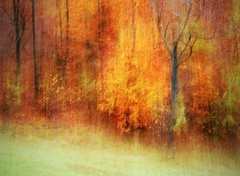 Jesenné maľovanie 30
