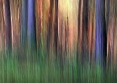 Jesenné maľovanie  24