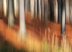 Jesenné maľovanie  22