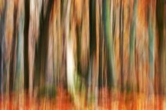 Jesenné maľovanie  26