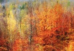Jesenné maľovanie  34