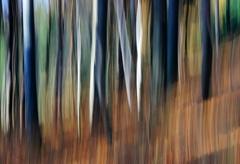 Jesenné maľovanie  35