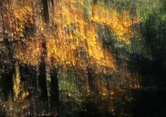 Jesenné maľovanie  25