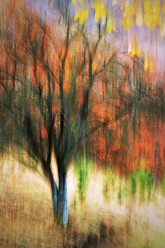 Jesenné maľovanie 27