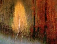 Jesenné maľovanie  28