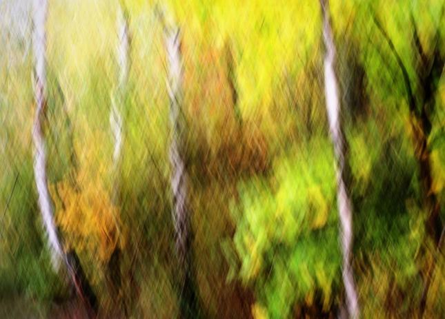Jesenné maľovanie  33