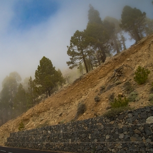 Cesta na sopku Teide,Tenerife