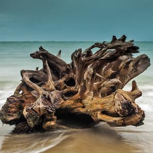 na karibskej pláži I.