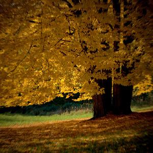 Neostrá jeseň