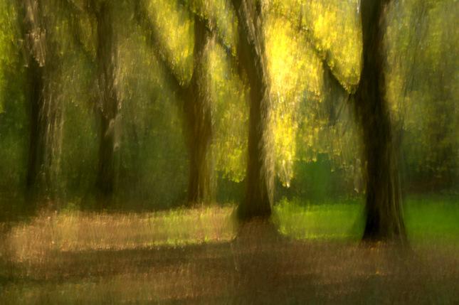 Jesenná maľovačka