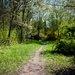 Moravecký park