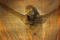 JEŽIŠ KRISTUS - VYKUPITEĽ