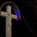 Lipa a kríž
