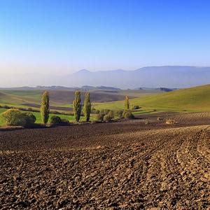 Krajinka v turci