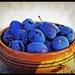 Modré zátišie