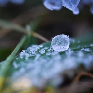 Zamrznutá v čase
