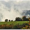 Jesenno-hmlová