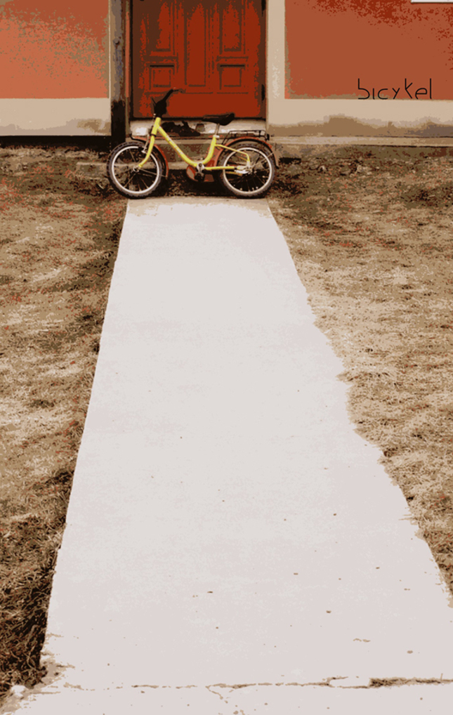 What I saw riding my bike...