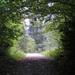 Prechádzka v Raji