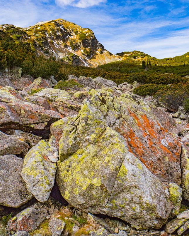 Colored boulder