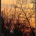unavený západ Slnka