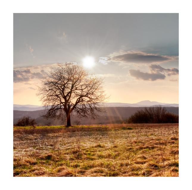 Pohladený lúčmi Slnka