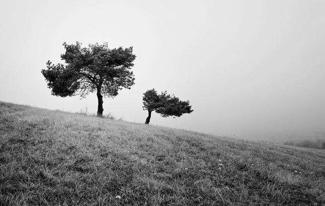 Ošlahaní vetrom