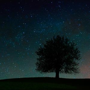 Sny o hviezdach...