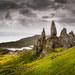 Divoka Skotska vysocina II