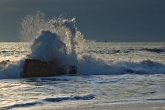 Sila vlny